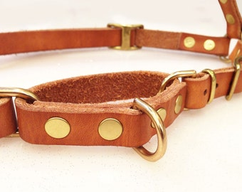 Adjustable Custom Leather Dog Harness