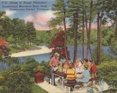 Happy Picnickers at Cumberland Mountain State Park, Tennessee, Vintage Postcard, Linen Postcard, Travel, Vacation, Road Trip, Family