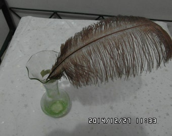 100pcs brown Ostrich Feather Plume for Wedding centerpieces,