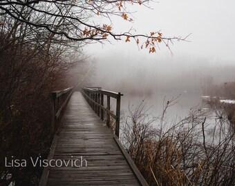 Fog, Landscape, Fine Art Photograph, Print, Winter, Trees, Bridge, Swamp