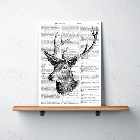 Stag Decor 28 Images Hanging