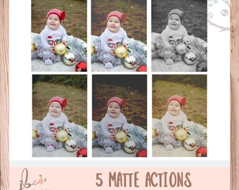 5 Matte Actions for Photoshop/PSE