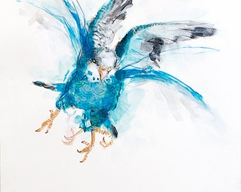 Budgerigar (Blue) - Limited edition giclee print