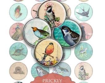 "Vintage Birds, Digital Collage Sheet, Victorian Clip Art, Jewelry Making, Circles, 1.5"" Crafts, Digital Downloads, cabochon"