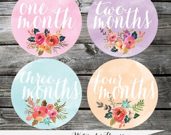 Set of Baby Monthly Stickers Watercolor Milestone Stickers Baby Month Stickers Baby Bodysuit Sticker Baby Shower Photo Prop