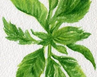 Basil Watercolors Paintings Original, Small Vegetable Painting, Kitchen Decor, 4 x 6, Herb watercolor painting, original watercolor painting