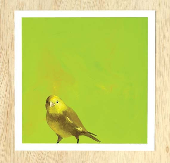 Why You Should Learn To Dance Alone At First 10 x 10 Art Print - Bird - Animal - Nature - Canary - Mincing Mockingbird - Gift