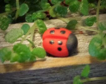Fairy Garden Ladybugs Polymer Clay