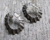 Seashell LIMPET sterling silver post stud earrings