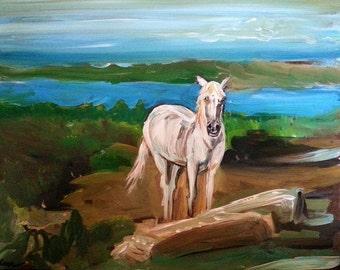 Wall Art - Original Art - France Art - Horse Art - Make a Wish - Camargue, France