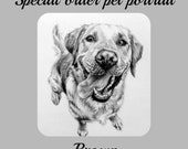 Special order pet portrait, Brown