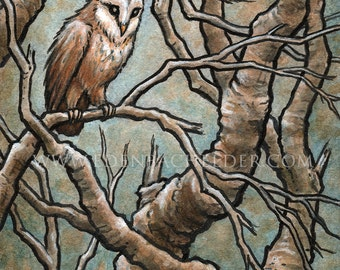 "Little Owl signed and matted print of original ink and watercolour painting by Eden Bachelder, image 5"" x 7"", matting 8""x10"""