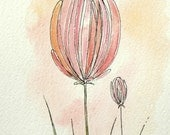 pink flower buds watercolor painting