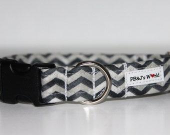 PBJ World Custom Collar...Making Waves