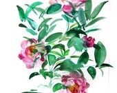 Peonies -  Watercolor Painting - Abstract Floral - Pink Green - Bright - Illustration - 11x14 Print - Home Decor - Flowers
