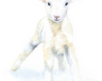 Watercolor Lamb - 4 x 6 - Giclee Reproduction Fine Art Print - Nursery Art - Sheep