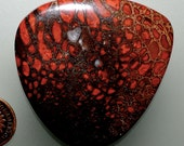 Fossil Dinosaur Bone Red Color 100% Natural Hand Cut Cabochon from 49erMinerals Stock# B1317, free U.S. shipping