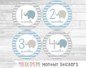 Monthly Baby Boy Stickers, Milestone Stickers, Baby Month Stickers, Monthly Bodysuit Sticker, Blue and Gray (Elephants Gender Neutral Blue)