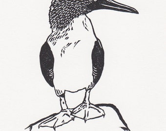 """Blue-footed booby - limited edition, original fine art block print (4 x 5.5"""")"""