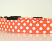 Orange Polka Dot Dog Collar Wedding Accessories Halloween Collar Made to Order