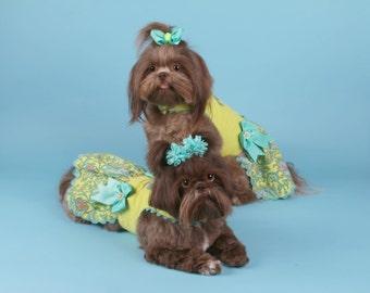 WINTER:  Bright Lime Paisley Corduroy Dog Dress