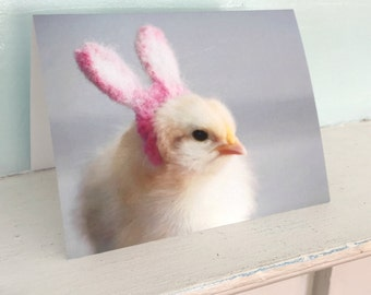 Chicken Card Chick in Rabbit Easter Bunny Ears Folded Photo Greeting Notecard Baby Animals (1)