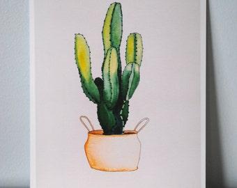 Custom Cactus Watercolor Painting for Hulahup