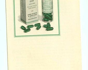 Vintage Wyeth's Capsules Digitalis Leaf Brochure Pharmaceutical Advertising Ephemera