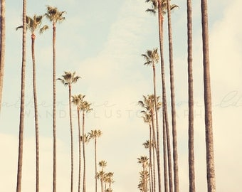Palm Tree Stripes - Photographic Print - Palm Tree, Los Angeles, California, Bohemian, Eagle Rock, blue, boho, travel, Wall, Decor, Hanging