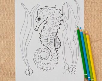 Seahorse Coloring Page Printable, Instant Download Digital File, Aquatic Ocean Animal, Marine Life