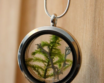 Forest moss and lichen silver necklace, terrarium necklace, nature necklace