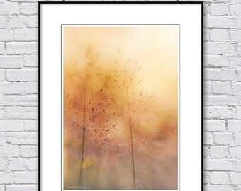 Abstract photography, grass photo, minimalist wall decor print, fine art photography, abstract fine art print, orange abstract wall decor