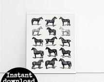 Equestrian art print, black and white set of 15 horses, gift for horse lover, tack room wall art, horse poster, instant download.