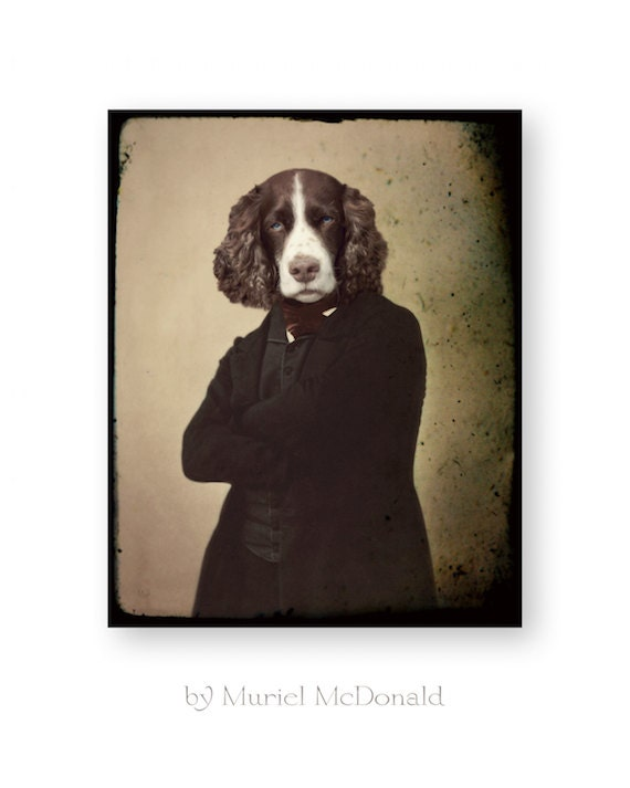 What Was Mr Rochester S Dog S Name