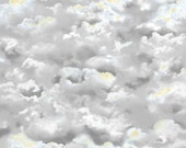 Cloud Fabric - Smithsonian Wingman by Quilting Treasures 23614 K Gray - 1/2 yard