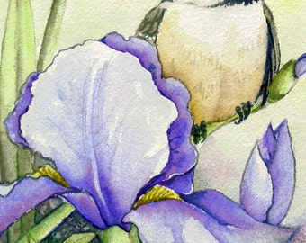 ACEO - LIMITED EDITION Print; run of 10, art, chickadee and Iris Two, flowers, garden, song bird, wings, feathers, nature