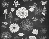 chalkboard florals, flowers and leaves, clip art hand drawn, digital foliage graphics commercial use, wedding clipart