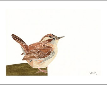 geometric carolina wren