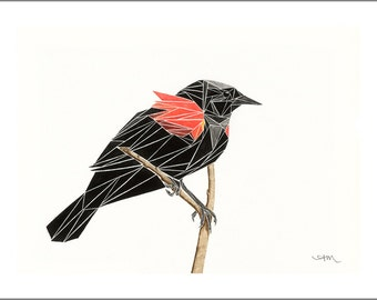 geometric red-winged blackbird