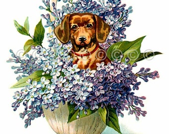 Dachshund Fabric Applique Dog in Basket Lilac Flowers Quilt Block Panel, Crazy Quilting Supply - Dog Fabric Block