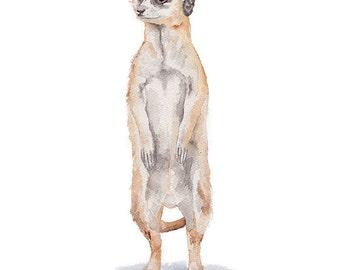 Meerkat Watercolor Painting 8 x 10 (8.5 x 11) Giclee Fine Art Print