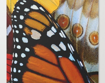 Monarch Butterfly Fine Art Print - Butterfly Photography - Nature Photography - Large Wall Art Canvas - Monarch Butterfly - Wall Art Print