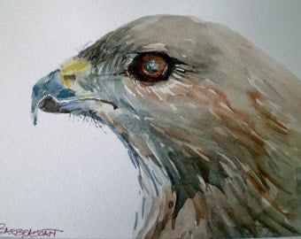Hawk painting, Fathers Day, original watercolor,