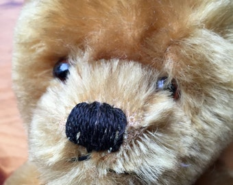 GORGEOUS Vintage 1960s Twyford Teddy Bear, with lots of love left in his fur!