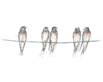 SwallowPrint , Row of Swallows, Summer birds