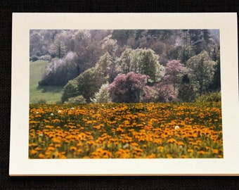 Greetings card: Fields of Gold