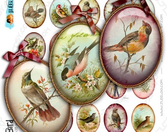 Digital collage MY BIRDS oval printable 30x40 mm victorian garden paper goods for pendants digital collage instant download paper - ov119