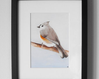 Tufted Titmouse Bird Watercolor - Print