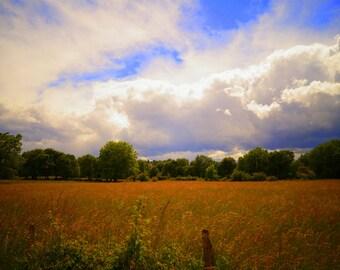 Fiery Field in Beaujolais - Landscape Photography, Beaujolais, France, Fine Art Print, Home Decor
