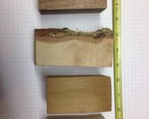 Bottle stopper wood turning blanks